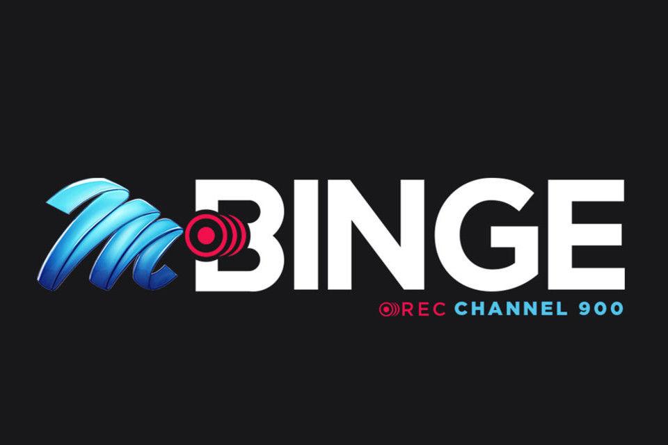 28 binge logo 005 pre