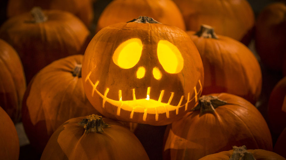 Halloween, Pumpkins, scary, dress-up, horror, characters,