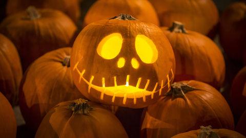 DStv_Halloween_Pumpkins