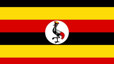 DStv_Uganda_flag