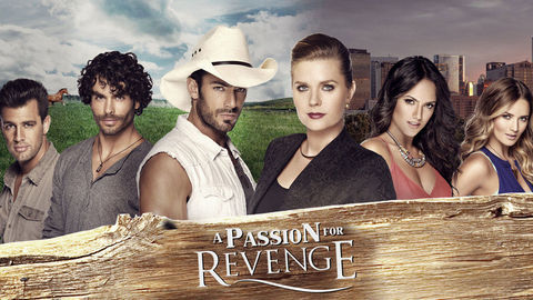 DStv_A_Passion_for_Revenge