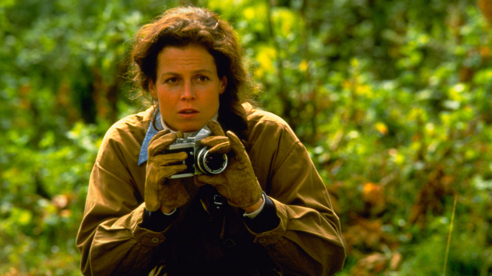 An image of Sigourney Weaver in Gorillas in the mist