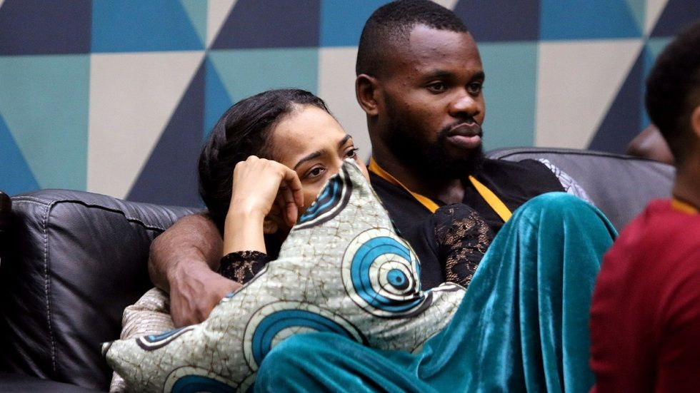 Contestants in Big Brother Naija