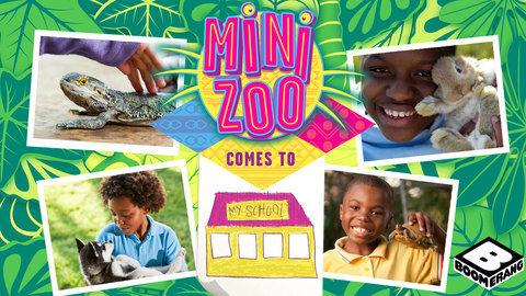 DStv_Boomerang_Mini_Zoo_18_2017