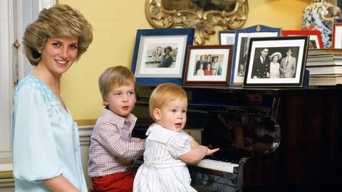 DStv_Princess Diana and her sons