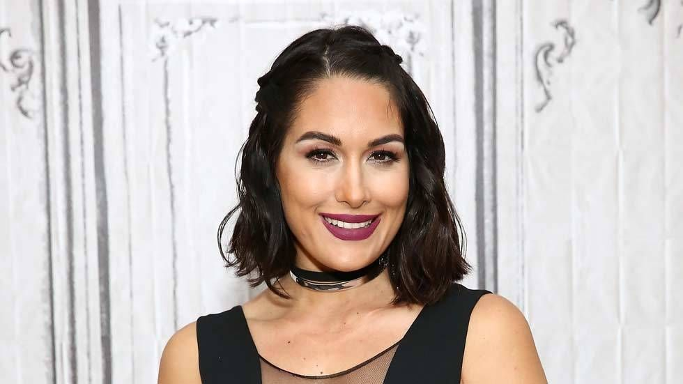 An image of Brie Bella