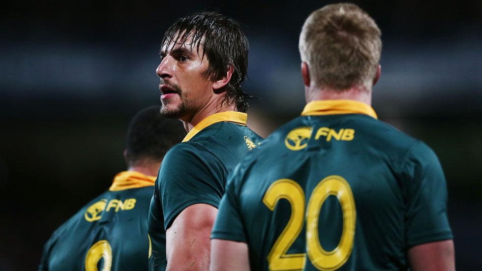 Image of the Springboks.
