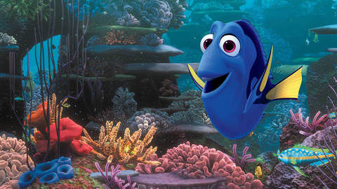 DStv_Movies_FindingDory