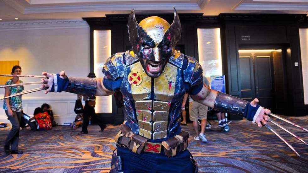 A model of Wolverine