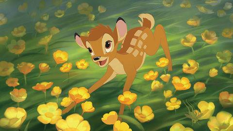 DStv, Disney, Bambi