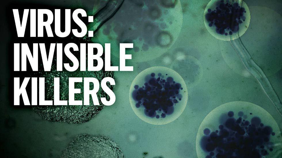 Virus: Invisible Killers