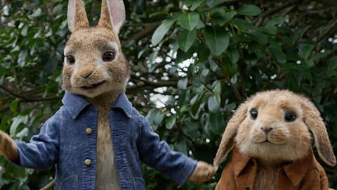 DStv_PeterRabbit_BoxOffice